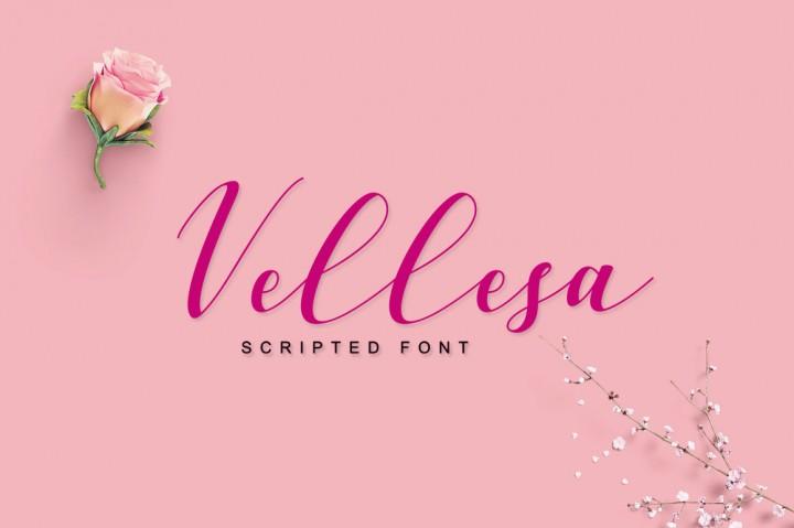 vellesa-script-font