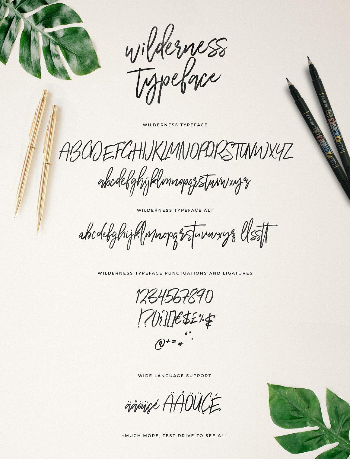wilderness-brush-font-5