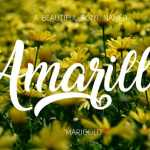 Amarillo Font Free Download