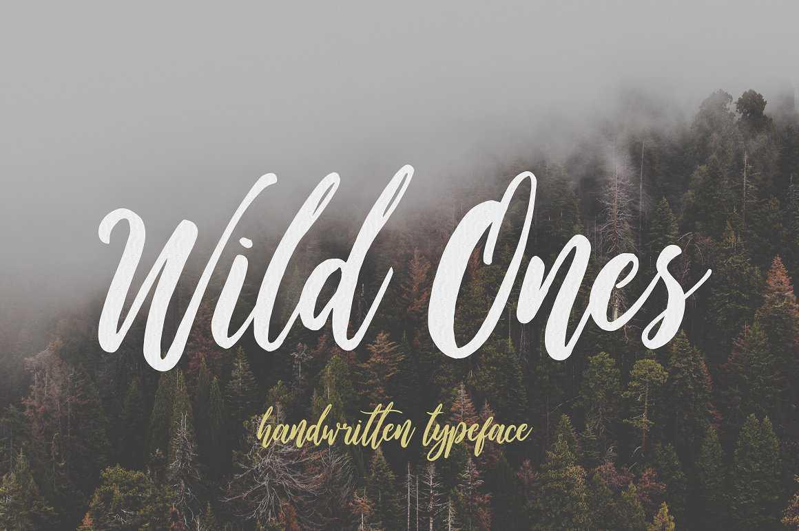 wild-ones-script-font