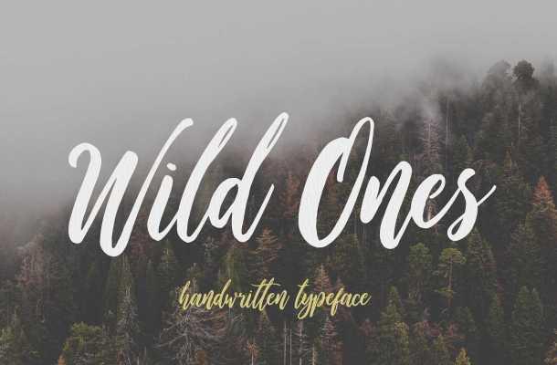 Wild Ones Script Font Free