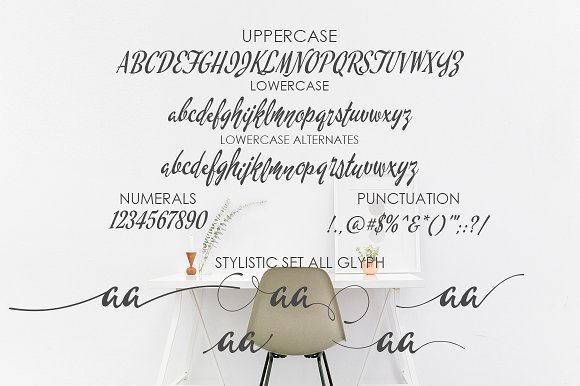 chintia-script-font-4