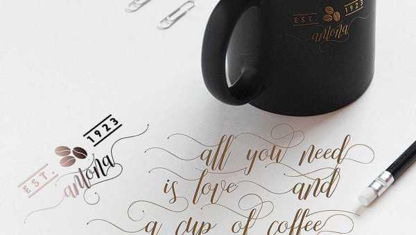 Molinha Script Font Free Download
