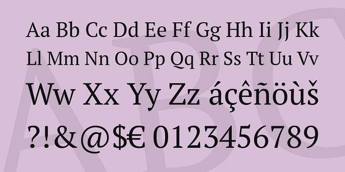 PT Serif 1
