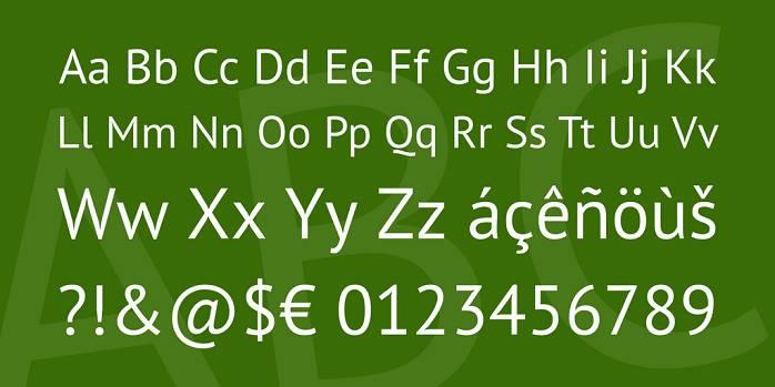 PT Sans Caption Font Family-1