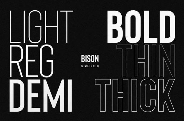 Bison Font Family