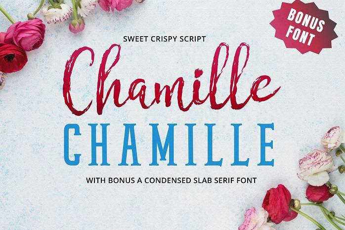 Chamille Font Duo