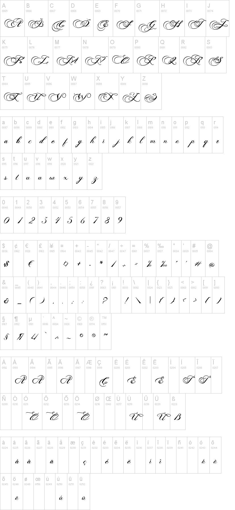 Photograph Script Font-1