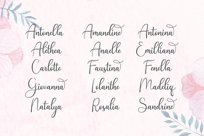 Andina Script Font-2