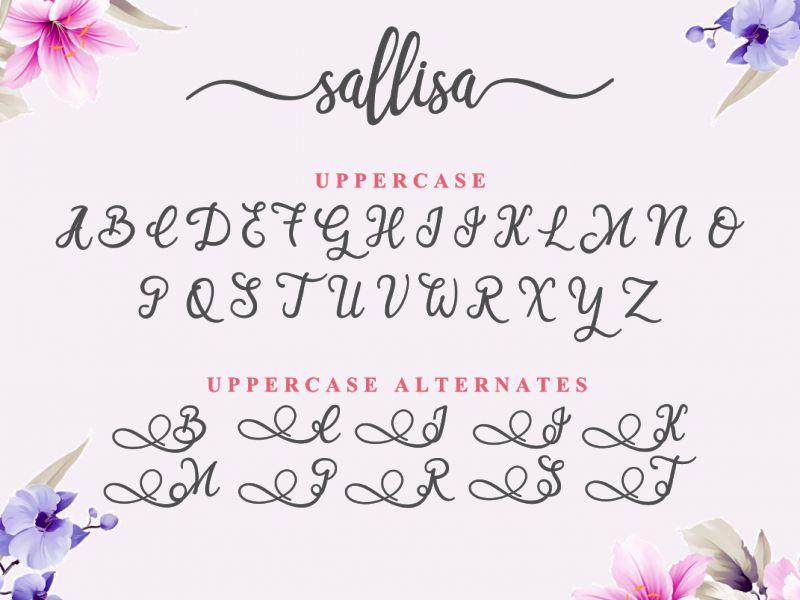 Sallisa Script Font-2
