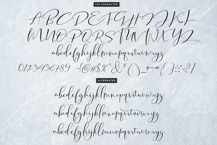Tifany Script Font-1