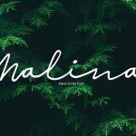 Malina Script Font