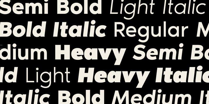 Noir Font Family-2