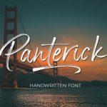 Panterick Brush Font