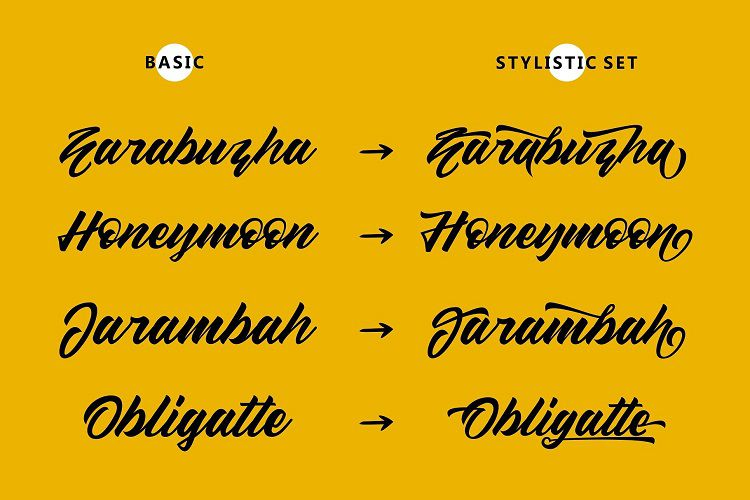 Sellwyne Script Font-3