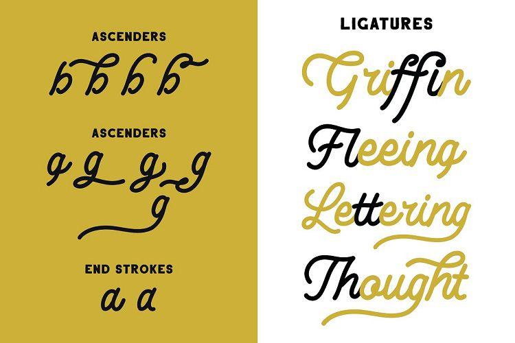 Lesley Monoline Script Font-3