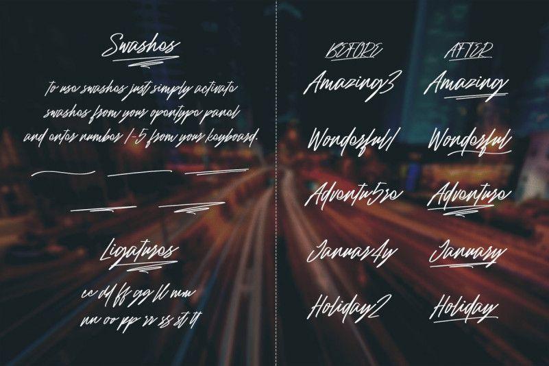 Raidden Script Font Family-3