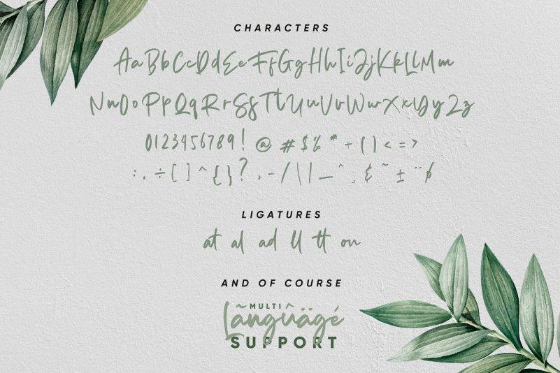 Aedesty Handwritten Font-3