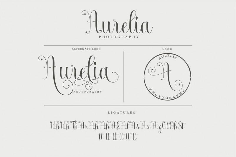 Armadilla Script Font-3