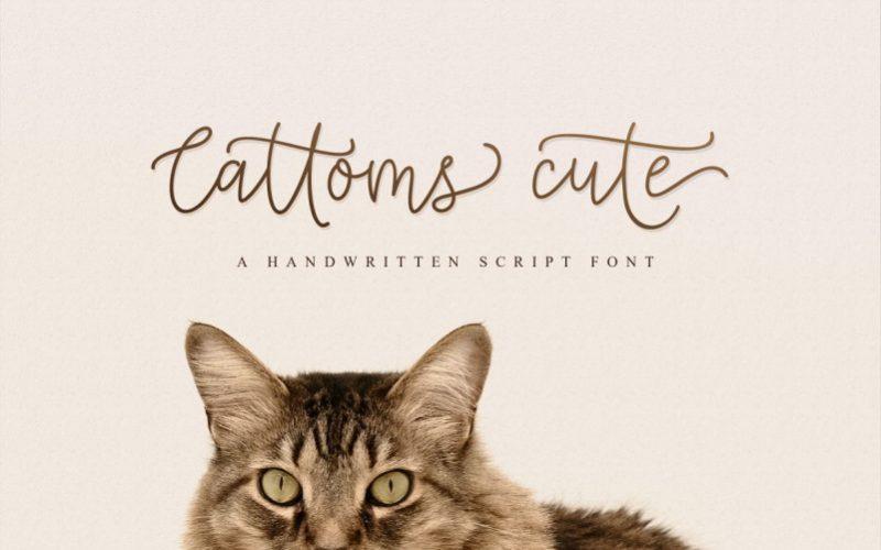 Cattoms Handwritten Font - Dafont Free