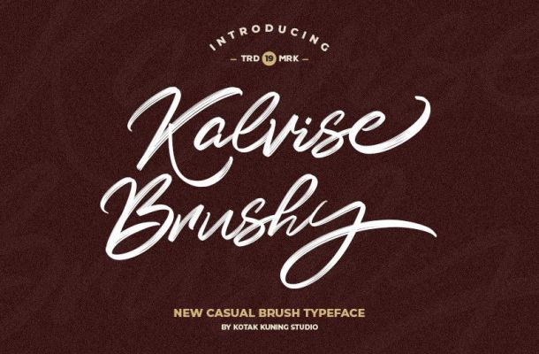 Kalvise Brushy Script Font