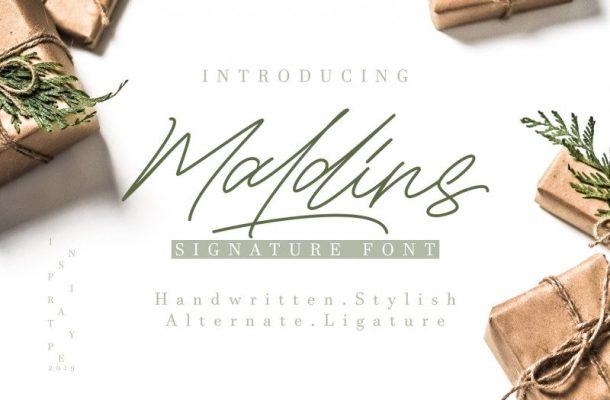 Maldins Stylish Signature Font