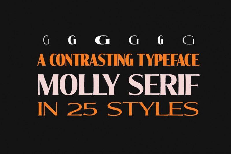 Molly Serif Font Family-2