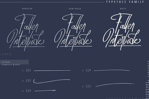 Sidoraby Script Font-3