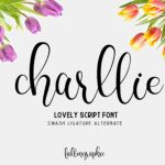 Charllie Script Font