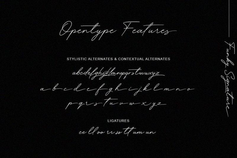 Funky Signature Font-3