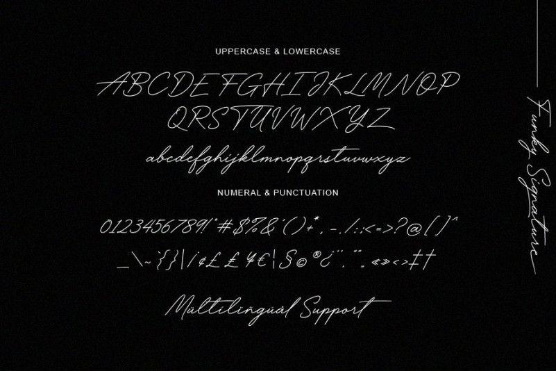 Funky Signature Font-4