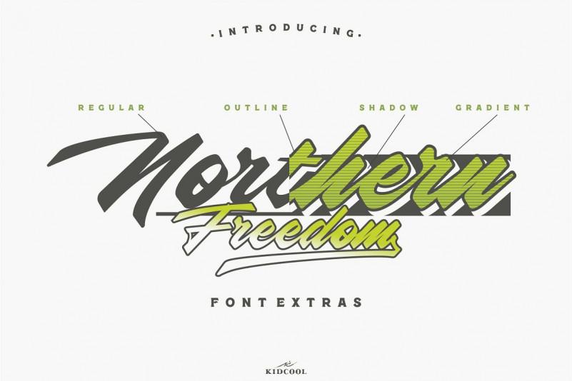 Northern Freedom Script Font - Dafont Free