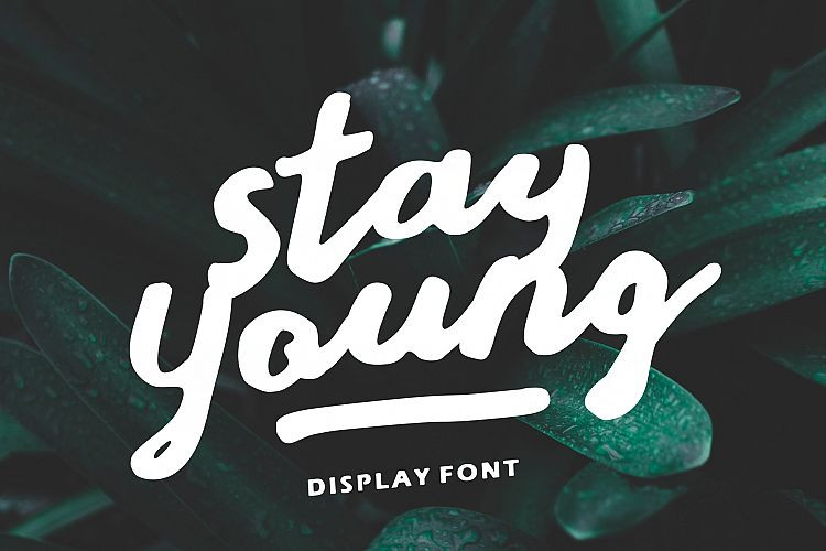 Stay Young Script Font-1