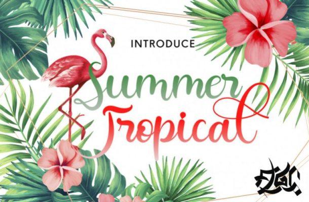 Summer Tropical Font