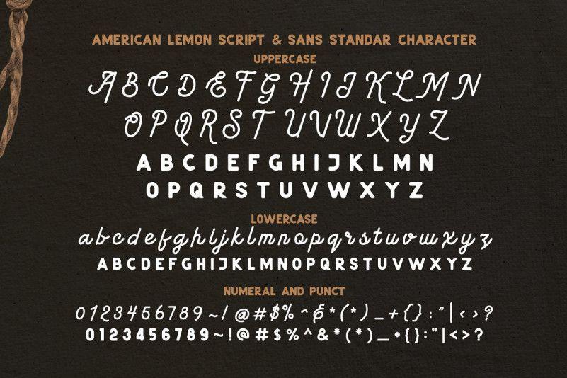 American Lemon Font Duo-3