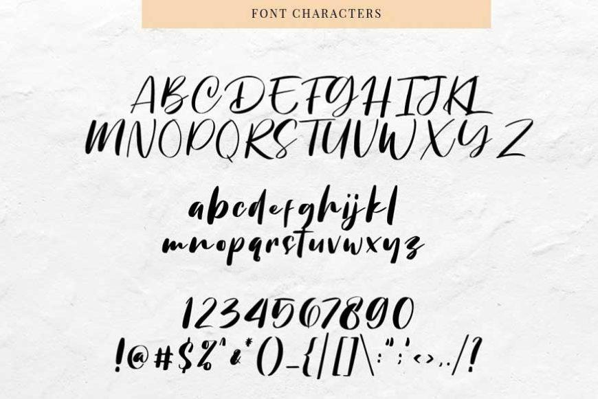 Chellyne Modern Script Font-3