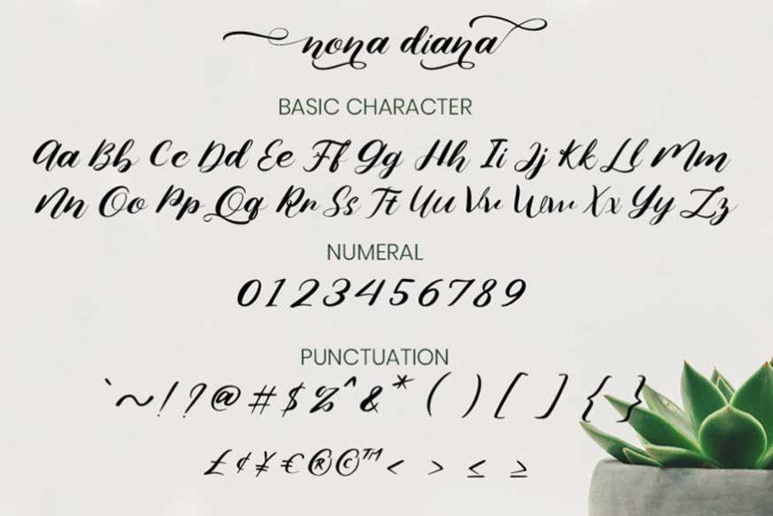 Nona Diana Script Font-3