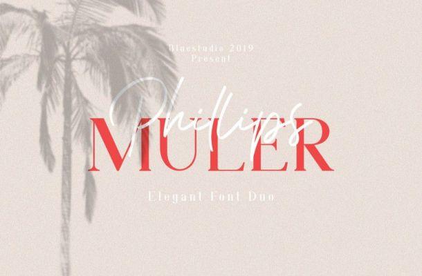 Phillips Muler Font Duo