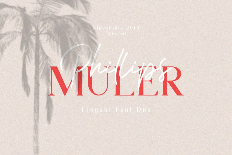 Phillips Muler Font Duo-1