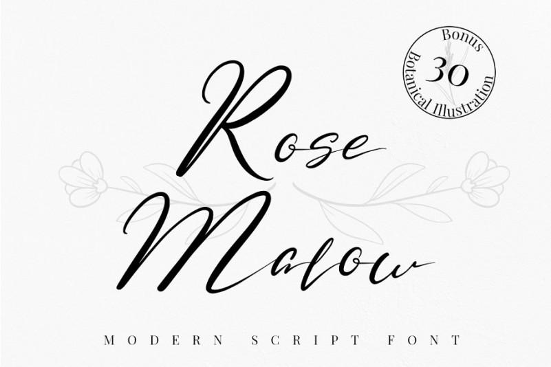 Rose Malow Script Font-1