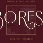 Borest Elegant Roman Sans Serif Font