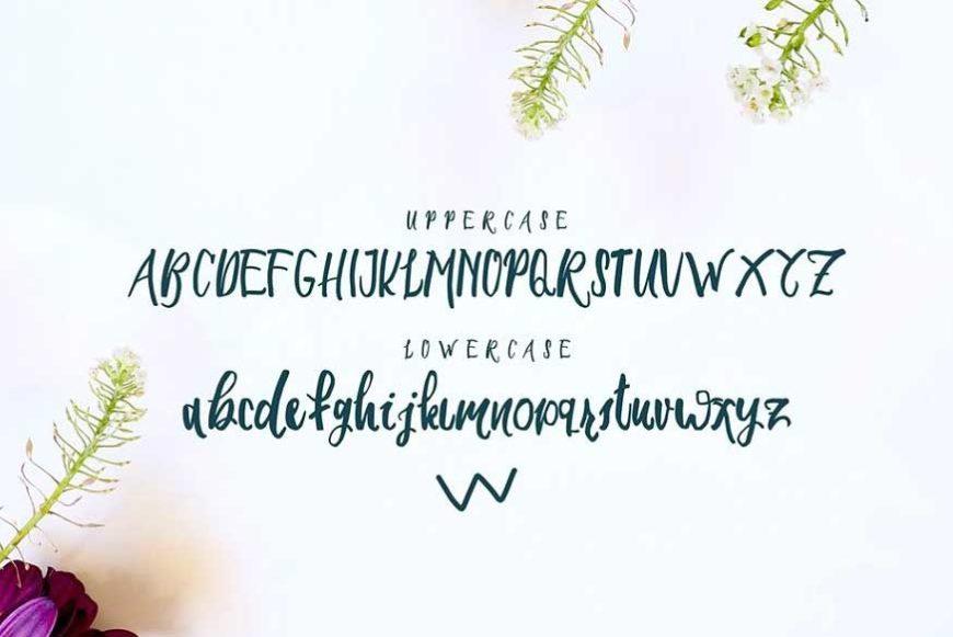 Seiroetan Font-2