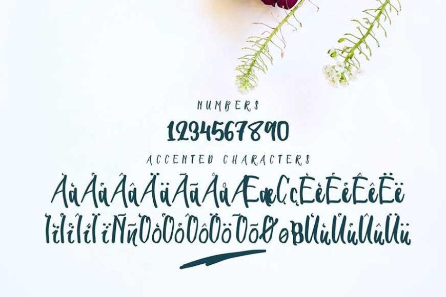 Seiroetan Font-3