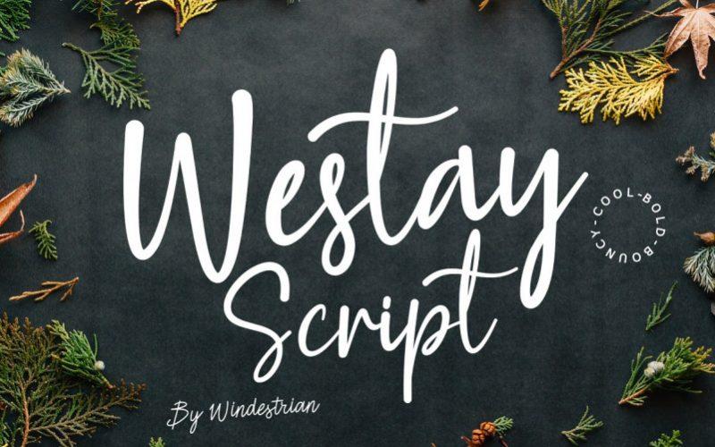 Westay Bold Script Font-1