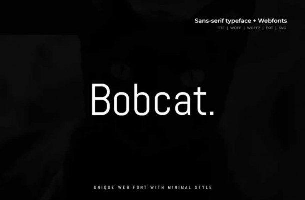 Bobcat Modern Typeface