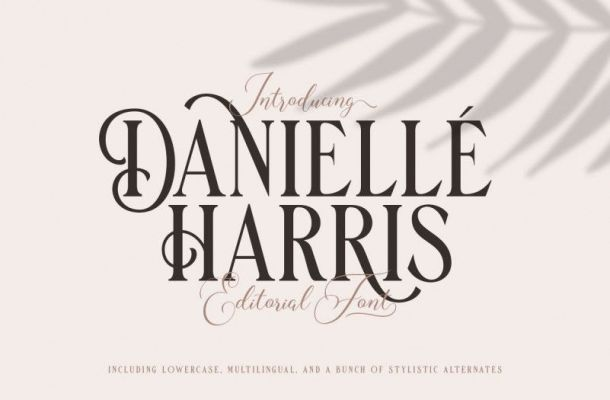 Danielle Harris Display Font