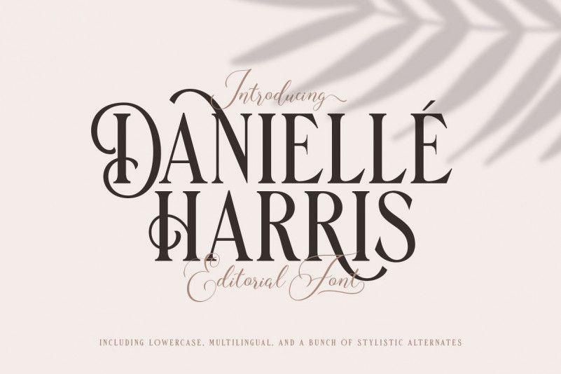 danielle-harris-display-font-1