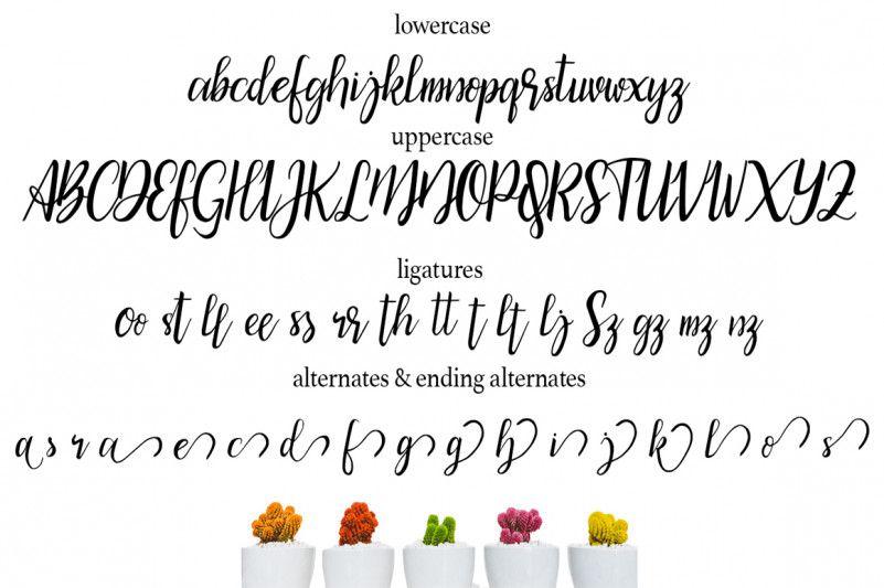 bicillesta-calligraphy-font-3
