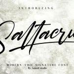 Saltacrus Script Font