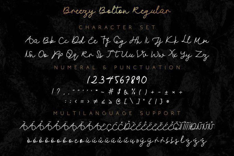 Breezy Bolton Script Font Duo-3